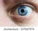 eye macro | Shutterstock . vector #137067974