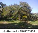 nature with garden | Shutterstock . vector #1370693813