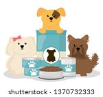 cute little dogs with food | Shutterstock .eps vector #1370732333