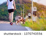 Stock photo woman and dog running together in road of public park naughty puppy dog always goes running out of 1370743556