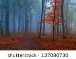 Mystic Forest With Red Leaves...