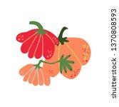 pumpkin fresh vegetable ... | Shutterstock .eps vector #1370808593