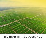 aerial view of green paddy... | Shutterstock . vector #1370857406