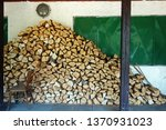 chopped wood stacked | Shutterstock . vector #1370931023