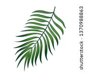 exotic and jungle design with... | Shutterstock .eps vector #1370988863