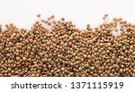 healthy and nutritious food ... | Shutterstock . vector #1371115919
