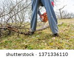 worker using chain saw and... | Shutterstock . vector #1371336110