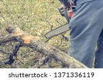worker using chain saw and... | Shutterstock . vector #1371336119