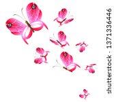 beautiful pink butterflies... | Shutterstock .eps vector #1371336446