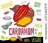 cardamom icon herb label fresh...   Shutterstock .eps vector #1371362579
