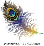 Peacock Feather Wing Bird...