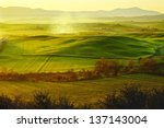 morning on countryside in... | Shutterstock . vector #137143004
