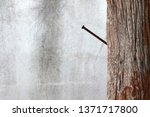 nail in a wooden pole on a... | Shutterstock . vector #1371717800