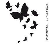 silhouette beautiful... | Shutterstock .eps vector #1371851636