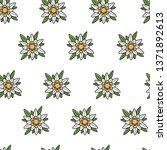 austrian symbol edelweiss wild... | Shutterstock .eps vector #1371892613