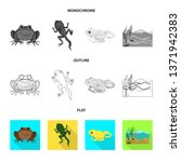 vector design of wildlife and... | Shutterstock .eps vector #1371942383
