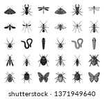 different kinds of insects... | Shutterstock .eps vector #1371949640