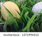 easter eggs in grass....   Shutterstock . vector #1371994313