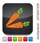 vector vegetable carrot... | Shutterstock .eps vector #1372027229