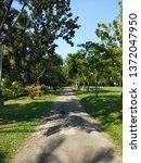 natural in the  garden  | Shutterstock . vector #1372047950