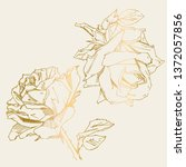 hand drawn rose. vector... | Shutterstock .eps vector #1372057856