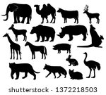 Stock vector vector set of animals silhouettes elephant gondar giraffe ostrich kangaroo and other 1372218503