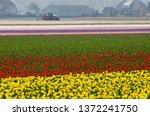 Noordwijk  The Netherlands ...