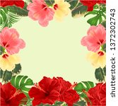frame  bouquet with tropical... | Shutterstock .eps vector #1372302743