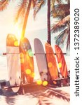surfboard and palm tree on... | Shutterstock . vector #1372389020
