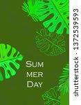 leaves of tropical plants....   Shutterstock .eps vector #1372539593