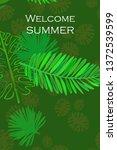leaves of tropical plants....   Shutterstock .eps vector #1372539599