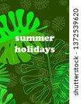leaves of tropical plants....   Shutterstock .eps vector #1372539620