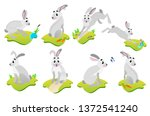 Stock photo hare or rabbit animal icon vector animals in cartoon style 1372541240