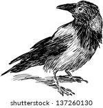 crow | Shutterstock .eps vector #137260130
