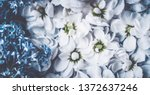 botanical backdrop  nature and... | Shutterstock . vector #1372637246