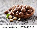 macadamia nuts on wooden... | Shutterstock . vector #1372645313