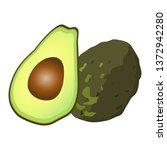 illustration of cut avocado | Shutterstock .eps vector #1372942280
