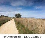 trekking path through the sand... | Shutterstock . vector #1373223833
