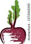 illustration of beet in the... | Shutterstock .eps vector #1373403350