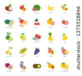 exotic fruits hand drawn... | Shutterstock .eps vector #1373528846