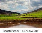 ancient salt exploitation of...   Shutterstock . vector #1373562209