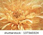 Orange Flower Vintage Background