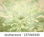 White  Flower Vintage Background