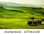 Countryside  San Quirico D...