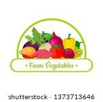 vector collection of farm... | Shutterstock .eps vector #1373713646