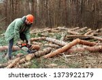 logging  worker in a protective ... | Shutterstock . vector #1373922179