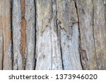 wood texture background surface ... | Shutterstock . vector #1373946020