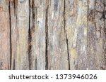 wood texture background surface ... | Shutterstock . vector #1373946026