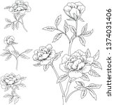 rose buds drawn by a line   Shutterstock .eps vector #1374031406