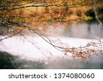 winter snow in the nature | Shutterstock . vector #1374080060